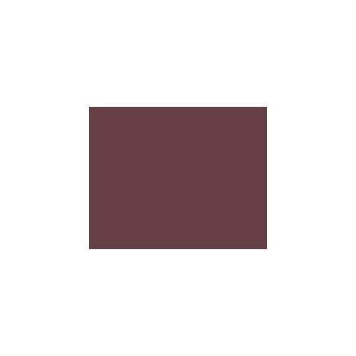 Estee Lauder All-Day Lipstick AGN Winter Rose at Sears.com